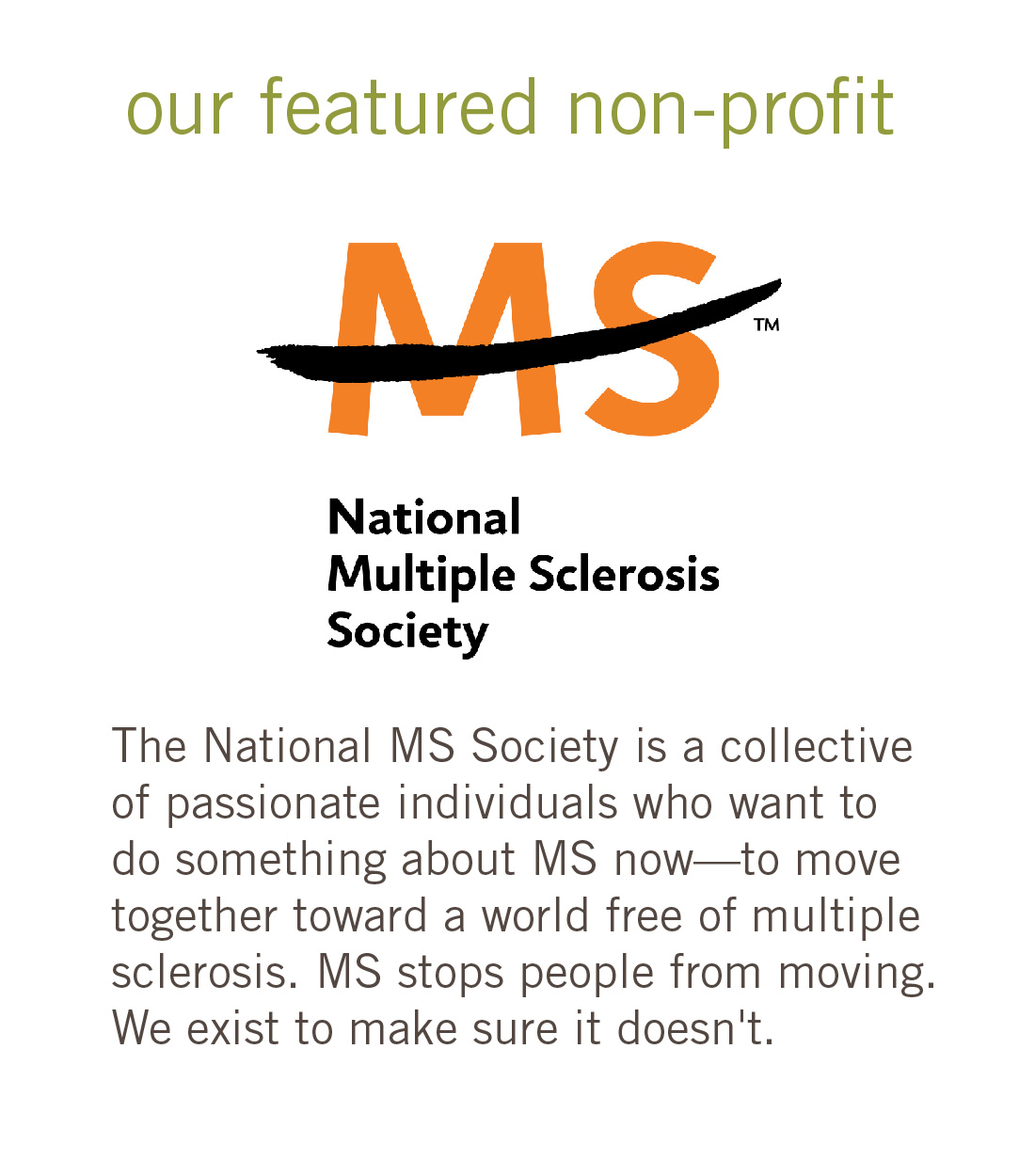 MS Society 260 Pixels box mailchimp-01